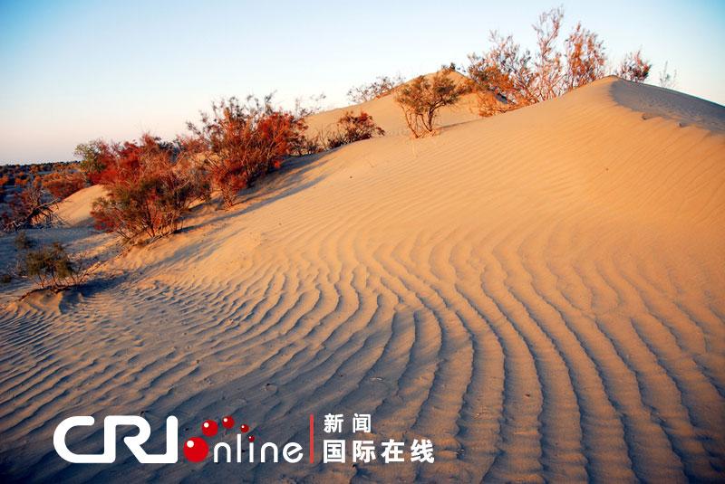 国际在线消息:新疆沙漠面积40多万平方公里,占中国沙漠总面积的近60%。在中国的十大沙漠中,新疆就占了3个。   很多人觉得,沙漠无非是地面上覆盖了厚厚的沙子,景致大同小异,其实这些沙漠都有着各自鲜明的特点。   新疆的沙漠中最为著名的就是塔克拉玛干沙漠,它位于南新疆塔里木盆地,语意进去出不来的地方,当地人通常称它为死亡之海。它是中国境内最大的沙漠,也是全世界最大流动沙漠,流动的沙漠宛若憩息在大地上的条条巨龙变幻莫测,也正如此塔克拉玛干沙漠是最神秘、最具有诱惑力的一个。   本期报道将带您跟随摄