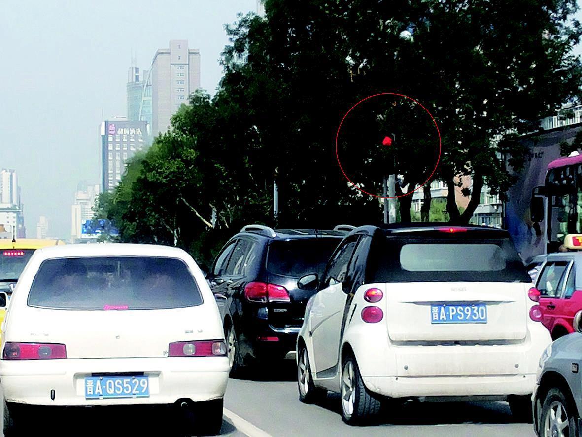 本报讯   (记者郭晓华实习生李玮李涵文/摄)府东街北京华联超市斜对面的一个交通信号灯被大树遮挡,给过往司机带来不便,存在安全隐患。昨日上午,市民李先生拨打本报热线 8222318反映该问题。   昨日上午10时许,记者来到府东街北京华联超市西侧,这里有一条横跨府东街的斑马线,在斑马线两头的便道上安装有交通灯。记者观察发现,路北指示西向车道的交通灯,被路旁一棵行道树的枝叶遮挡。由于这棵行道树枝叶茂盛,如伞盖般将交通灯罩住,致使灯藏叶中,若隐若现。如果不仔细看,人们很难发现树叶中有信号灯。