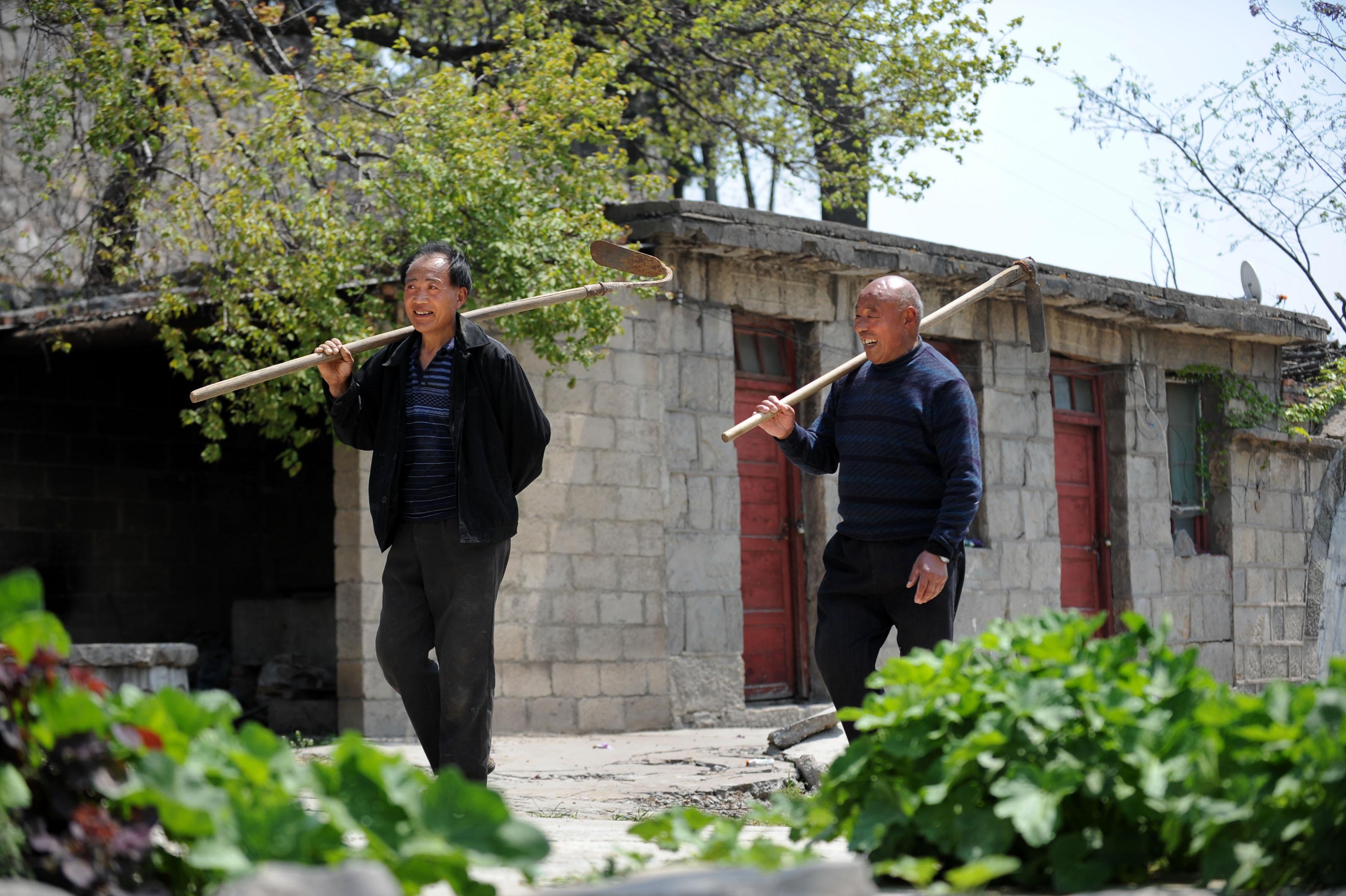 (锐视角)(2)全国劳模——张福根:实干苦干带领村民奔小康